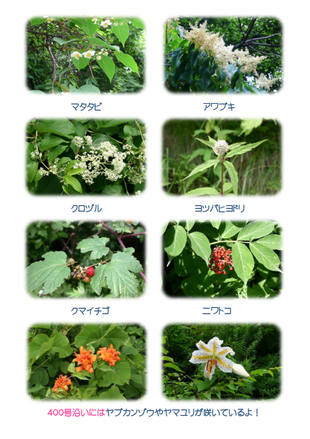 20110723-10__3_.png
