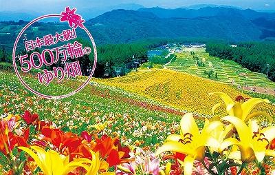 20110716-yuri_main.jpg