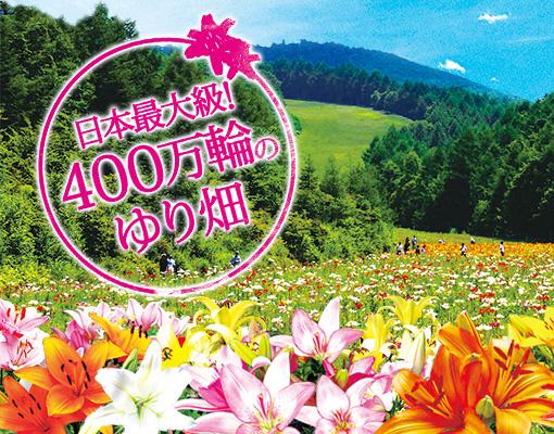 20140704-mainimage_01.jpg